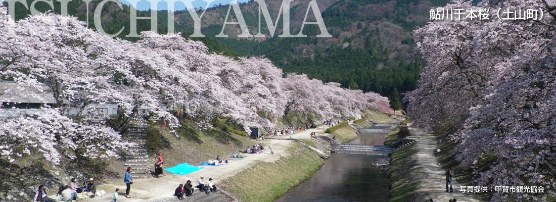 slider_20160201_tsuchiyama